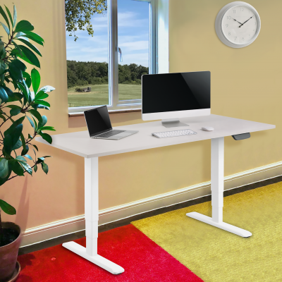 Dual Motor Electric Height Adjustable Desk