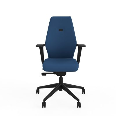 Deluxe ergonomic posture chair with height & depth adjustable arms (RS600A)